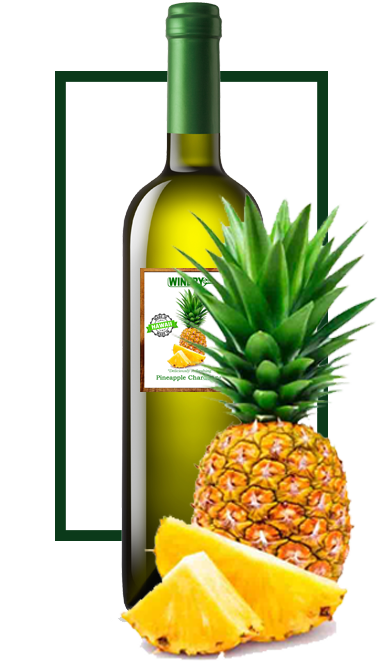 oeno wine pineapple chardonnay in ABC Stores